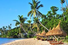 Main Beach - Paradise Cove Resort - Fiji