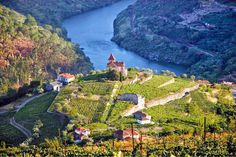 Douro Vallei, Portugal  (photo: Johann Longier)