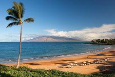 Maui Beach Resort - http://www.facebook.com/travelconti/posts/619921198161107