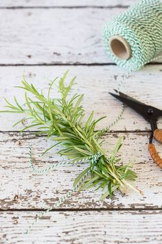 Rosemary, a herb with special taste and rosemary syrup - Simone's Kitchen