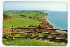 Walks And Walking - Lyme Regis Walking Festival Dorset