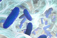 Do you have patients with infections that subside for awhile but then reappear? Bacterial and fungal biofilms might be to blame. Read on to learn about biofilms and how to treat them.