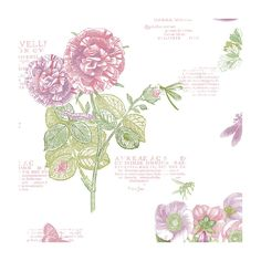 "Norwall Wallcoverings Inc Paradise 32.7' x 20.5"" Botany Floral Wallpaper   Wayfair"