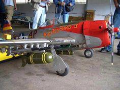 Republic P-47D Thunderbolt (Big Ass Bird II) (USAAF)