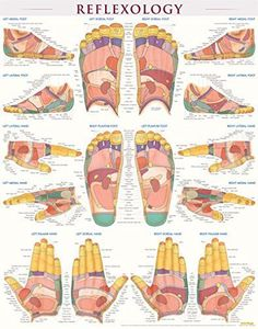 Reflexology-Laminated