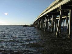Banana River, Merritt Island, FL Merritt Island Florida, Titusville Florida, Florida City, Cocoa Beach, Sunshine State, Home And Away, Palm Trees, Childhood Memories, Beaches