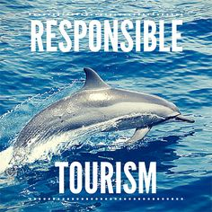 Articles about responsible tourism and travel on 'Travel With Kat'