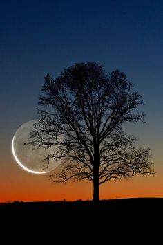 Thin Moon by Larry Landolfi on 500px