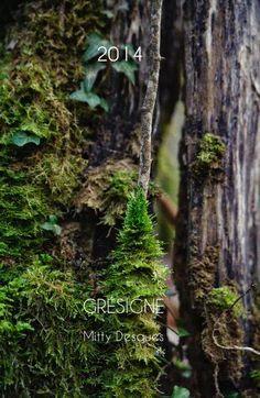 Agenda 2014 Photographies Mitty Desques Thème: Forêt de la Grésigne Une forêt magnifique située dans le nord du Tarn (France).