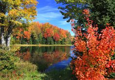 This is a photo of Mable Lake in Northern Vilas County on a beautiful fall day. by Micke Crowley