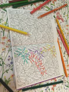 Colouring Pencils At The Ready For THE LIBERTY COLOURING BOOK