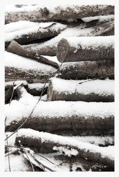 Snow logs