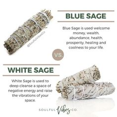 ZODIAC SEASON: What you need to know about sage burning and There Health Benefits from Burning Sage