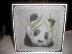 for my friend who loves pandas