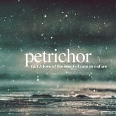 cool Definitions to words you likely never knew existed (27 Photos)