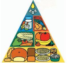 Jídelny.cz - Informační portál hromadného stravování Czech Recipes, Food Pyramid, Picture Day, Food Safety, My Heritage, Balanced Diet, Nutritious Meals, Health And Nutrition, Healthy Lifestyle