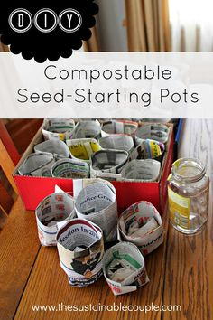 DIY Compostable {and FREE!} Seed-Starting Pots