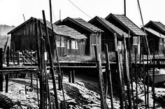 Cabanes de pêcheurs Chenal de la Grève à La Tremblade