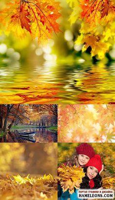 Осень - осенние листья, осенний лес, дети с осенними листьями - фотосток   Autumn