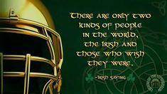 Go Irish, Irish American, Fighting Irish, Pride, Sayings, Lyrics, Word Of Wisdom, Gay Pride, Idioms