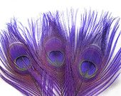 ROYAL PURPLE Peacock Feather Eyes size option) Pristine peacock feathers boutonnieres,earrings,bouquets, costume millinery -R Large Feathers, Peacock Feathers, Purple Peacock, Purple Swag, Peacock Colors, Periwinkle Blue, Millinery Hats, All Things Purple, Purple Stuff