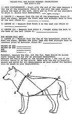 Sled dog harness and line for 1 dog husky malamute samoyed