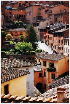 Sunny street in Siena, Tuscany , Italy