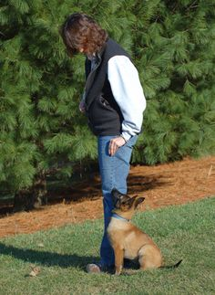 Any time that you are training one of your dogs, whether for behavior or simply to learn a new trick, it is essential that you ensure you have their attention first. This will help them to learn that you are the one in control and it also helps establish respect.