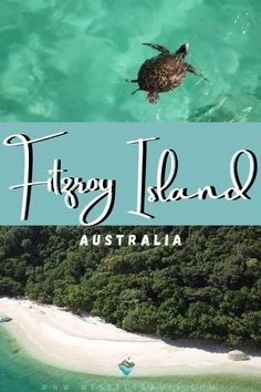FITZROY ISLAND THINGS TO DO AND SEE – COMPLETE GUIDE Rainforest Ecosystem, Marine Traffic, Water Activities, Most Beautiful Beaches, Island Resort, Whale Watching, Beach Walk, Great Barrier Reef, White Sand Beach