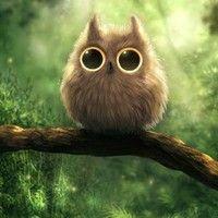 510,432,242 heap sugar Home..He looks like a Totoro! :D SO ADORABLE!!