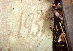 "Hudson Valley Ruins: Dark Shadows - ""The Old House"" - Tarrytown, NY - by Rob Yasinsac"