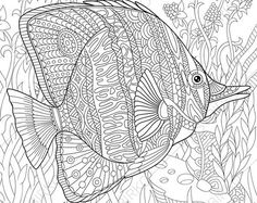 Butterflyfish Adult Coloring Page. Zentangle Doodle Coloring Pages for Adults. Digital illustration. Instant Download Print.