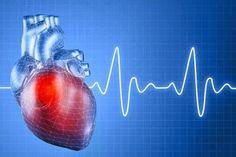 TU SALUD: Células madre que regeneran el corazón