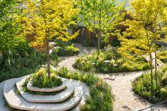 Chelsea Flower Show 2018 - RHS Feel Good Garden - Matt Keightley & Rosebank Landscape Architecture Design, Parking Design, Chelsea Flower Show, Urban Landscape, Garden Planters, Garden Planning, Amazing Gardens, Oeuvre D'art, Backyard Landscaping