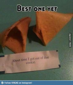 Haha I think I would be disappointed that I didn't get a real fortune cookie but this is still really funny! Funny Pins, Funny Memes, Jokes, Funny Stuff, Random Stuff, Random Humor, Funny Videos, Funny Cute, Funny