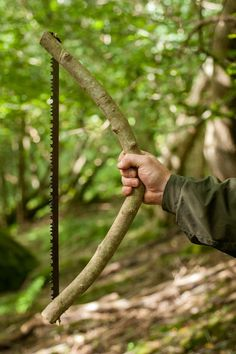How To Make Your Own Bowsaw   The Ray Mears & Woodlore Bushcraft Blog