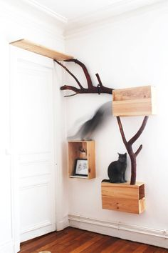 FUL[L] Urban Animal Furniture – Kratzbaum Katzen Haustier Möbel Katz … - Katzen Cat Trees Cheap, Cat Stairs, Diy Cat Tree, Cat Shelves, Cat Playground, Cat Room, Cat Condo, Pet Furniture, Luxury Furniture