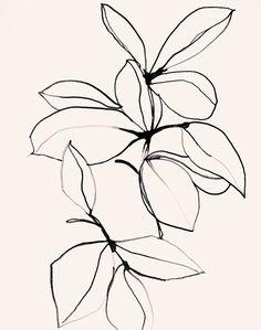 Foliage0118 - Plant Giclee art print by Leigh Viner  #foliage #illustration #art