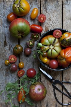 Heirloom Tomatoes Nicole Franzen