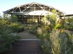 How to Transform An Abandoned Parking Lot Into a Wildlife Habitat, Marfa Edition: Gardenista