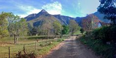 Up early on a pre-breakfast stroll into the Hermitage Kloof on Sunday morning. This is definately one of the prettiest areas of Swellendam, esp on a windless sunny morning Sa Tourism, Holiday Activities, Countries Of The World, Homeland, South Africa, Cape, Landscaping, Beautiful Places, Old Things