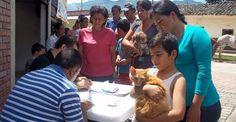 Masiva participación en jornada de inmunización animal en Timaná