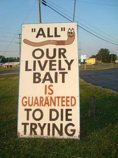 Lively bait is guaranteed to die trying! LOL