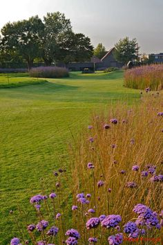 landschapstuin hennuyères | www.lineahortus.be Meadow Garden, Dream Garden, Prairie Garden, Country Landscaping, Garden Landscaping, Garden Types, Garden Architecture, Private Garden, Ornamental Grasses