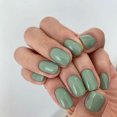 15 Hottest Summer Nail Colors to Try in 2021 - The Trend Spotter Nail Swag, Minimalist Nails, Nagel Tattoo, Stars Nails, Nagellack Design, Pointy Nails, Disney Nails, Nagel Gel, Dream Nails