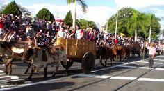 DESFILE DE CAVALEIROS DE JAGUARIÚNA 2015 PARTE6
