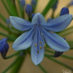 H Hugh Miller Photography: http://www.hhughmiller.com/portfolio