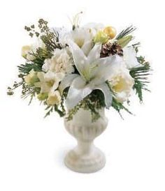 This festive arrangement in winter white is a great holiday gift or decoration.  White lilies, white lisianthus, white freesia and white carnations are professionally arranged in a glass vase with pine and holiday accents.