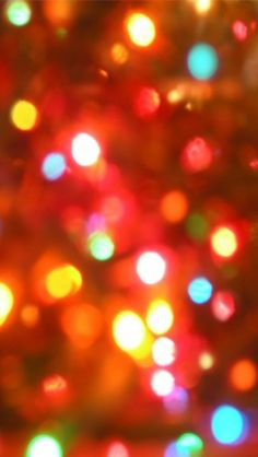 Colors of Christmas.