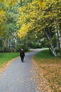 Proyecto MARES: El otoño de la vida